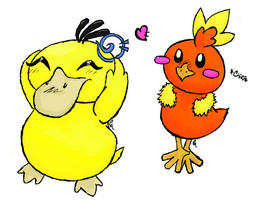 Torchic and Psyduck by CindTheSarkany