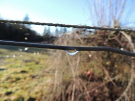 water droplet on a fence by CanadianThunder