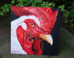 rooster by dutchway