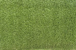Grass Texture 02 by goodtextures