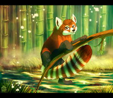Bamboo fun. by Suzamuri