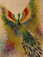 peacock of colors by Kahlil0Anthony