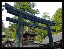 Toshogu Torii by DarthIndy