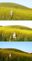 field of yellow by SPISIS