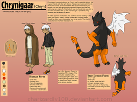 Chrynigaar Reference Sheet by Chari-Artist