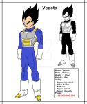 [DBMX] Vegeta, The Prince Of Saiyans ! by Cheetah-King