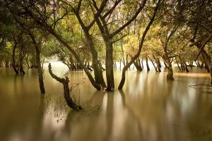 autumn flood II by arbebuk