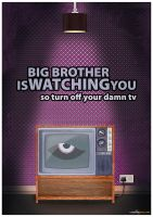 Big Brother Poster by Cheddar79