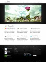 Striking Wordpress Theme by lickmystyle
