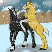 Playful romp in the snow by rempage