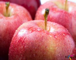 High Stock Image: Fresh Apple by brish08