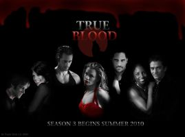 True Blood Season 3 by PowlaM