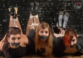 Katie, Missy and Strawberry hogtied by Damien2011