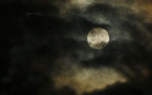Super Moon by KarenDFrancis