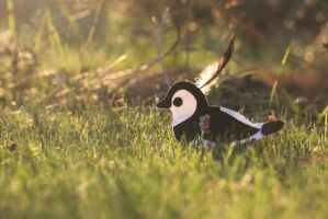 Felted Northern Lapwing in grass :) by Swallow6
