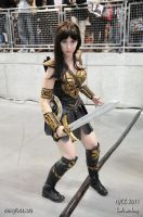 Me as Xena by Andrew Wong by BrassIvyDesign