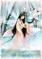 -Chinese Fairy- by dadoundy