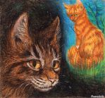 Brambleclaw thinks about Squirrelflight. Pastel by Romashik-arts