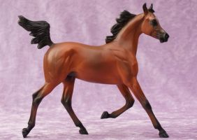 PS Arab Filly Resin by eclareee