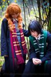 Harry Potter: Lily and Severus by VandorWolf