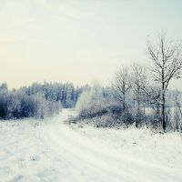 .: winter love :. by all17