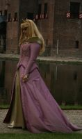 Elf Fantasy Fair 09 Aurora 33 by MarjoleinART-Stock