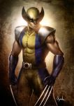 Wolverine X-men Origins by ChekydotStudio