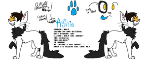 improved! Ashie ref by ZombieDubstepSlayer
