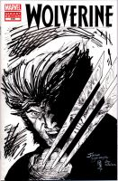 wolverine 310 sketch cover by giberwitz