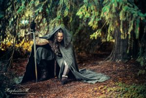 The Blood of Gondor by RaphaelleM