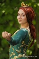Princess Fiona Cosplay 6 by ASCosplay