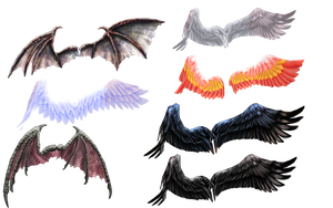 Ginjishi Wings DL LINK by RandomDraggon