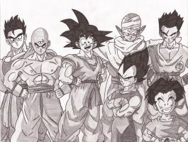 DBZ-Z fighters by superheroarts