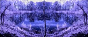 Horizontal Flip Lake infrared by MichiLauke