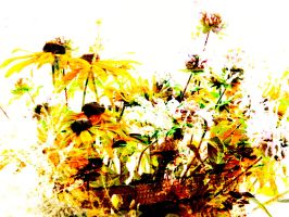 Imagine a Daisies Image Abstract Design by DonnaMarie113