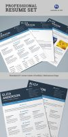 4 Pages Professional Resume/CV Set by vectorgenesis