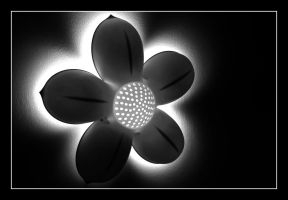 Flower Outer Glow by dav71