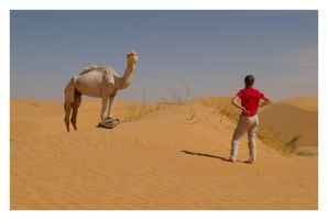 The Camel Whisperer by Tain0s