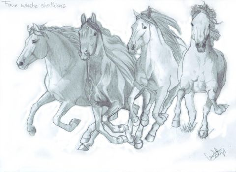 Four white stallions WIP by LindaColijn