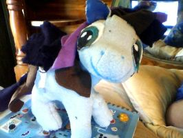 OC custom made MLP plush by mistresscarrie
