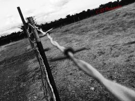 Barbed by Caliborn4life