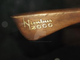 Nimbus 2000 by HollyVampasaurous
