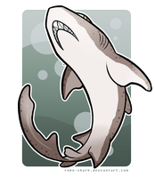 Shark Week: Spotted Gully Shark by Robo-Shark