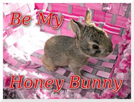 Be My Honey Bunny by Clash-With-Reality