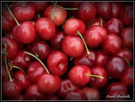 Cherries for everybody! by artistmember