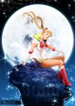 Rabbit on the Moon by Ernz1318