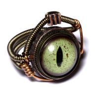 Steampunk  Alligator Eye Ring by CatherinetteRings