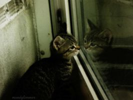 the strange one in the mirror by Mondglimmer