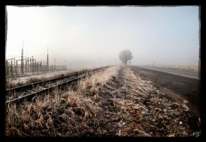 Parallel Paths by 360RVR