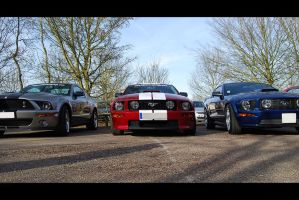 mustang familly by psycko91